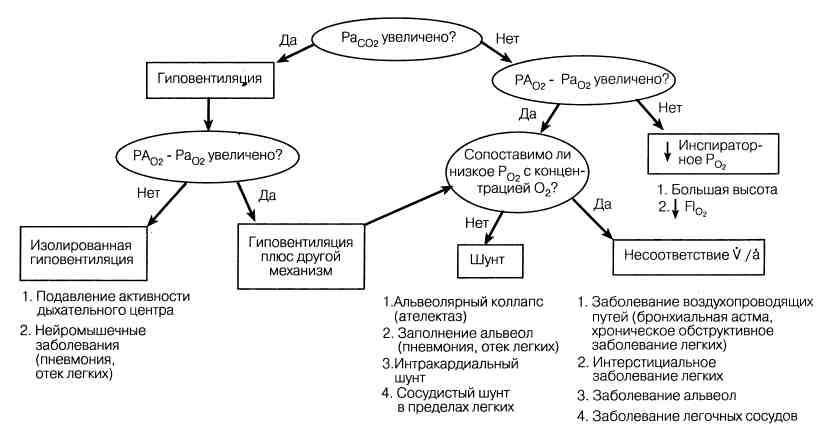 Схема диагностического подхода